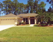 67 Point of Woods Dr, Palm Coast image