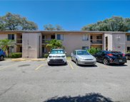 7604 Abbey Lane Unit 209, Tampa image