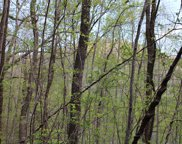 00 Brown Branch, Franklin image