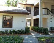 4835 Winslow Beacon Unit 46, Sarasota image