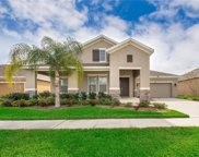 2460 Marshfield Preserve Way, Kissimmee image