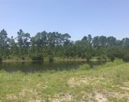 2204 Wood Stork Dr, Conway image