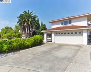 33057 Brockway Ct, Union City image