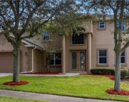 12134 Still Meadow Drive, Clermont image