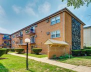 1727 West Touhy Avenue Unit 1, Chicago image