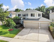 18124 Sandy Pointe Drive, Tampa image
