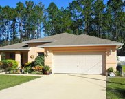 11 Ryberry Drive, Palm Coast image