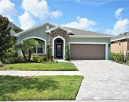 11871 Frost Aster Drive, Riverview image