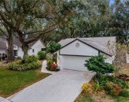 3254 Pine Forest Drive, Palm Harbor image
