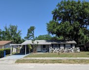 6462 Willow Wood Lane, Tampa image