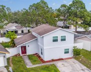 10608 Fairfield Village Drive, Tampa image