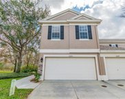 11072 Windsor Place Circle, Tampa image