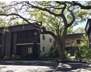 11708 Raintree Village Boulevard Unit A, Temple Terrace image