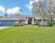 4 Double Branch Way, Ormond Beach image