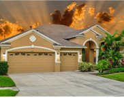 3122 Marble Crest Drive, Land O Lakes image