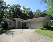9996 Sw 188th Circle, Dunnellon image