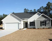 5368 BEAR BLUFF DRIVE, Conway image