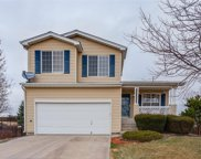 10700 Mount Bross Way, Parker image