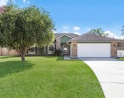 10318 STALLION RUN CT, Jacksonville image