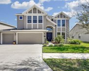 19354 Yellow Clover Drive, Tampa image
