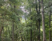 Lonesome Pine Lane, Great Cacapon image