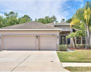19248 Meadow Pine Drive, Tampa image