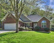 12501  Cedarford Court, Huntersville image