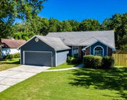 337 OLDFIELD DR, Orange Park image