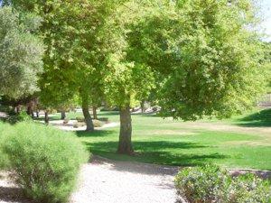 Ray Ranch Estates Green Belt