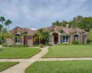 11902 Marblehead Drive, Tampa image