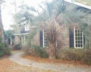 160 Red Tail Hawk Loop, Pawleys Island image