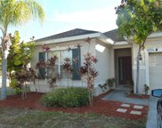 11802 Tangle Weed Way, Gibsonton image