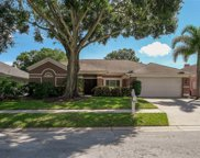 3085 Regal Oaks Boulevard, Palm Harbor image