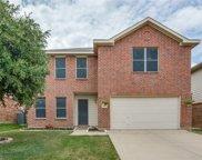4825 Leaf Hollow, Fort Worth image