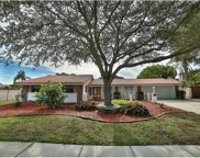 4709 Onyx Place, Tampa image