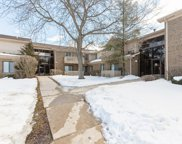 33715 N Royal Oak Lane Unit #209, Grayslake image