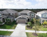 12327 Ballentrae Forest Drive, Riverview image