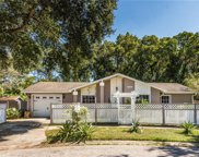 14963 Old Pointe Road, Tampa image