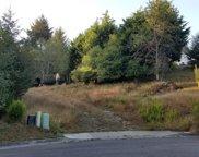 Blue Spruce Drive, Humboldt Hill image