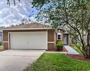 11813 Mango Cross Court, Seffner image