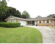 1097 Chokecherry Drive, Winter Springs image