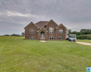 603 Co Rd 407, Clanton image