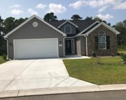 223 Turning Pines Loop, Myrtle Beach image
