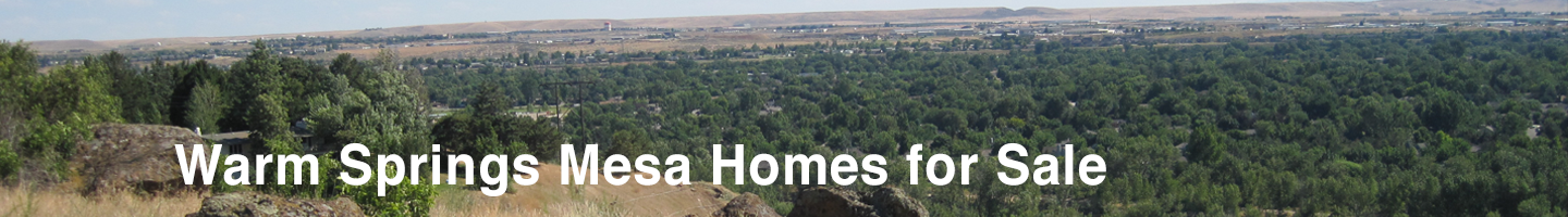 Warm Springs Mesa Real Estate
