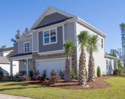 359 Cypress Springs Way, Little River image
