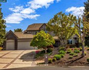 19 Royal Oaks Ct, Alamo image