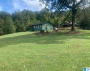 8931 Bluff Ridge Road, Mccalla image
