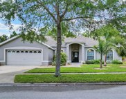 16252 Magnolia Hill Street, Clermont image