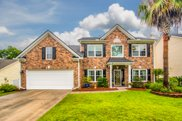 2399 Parsonage Woods Lane, Mount Pleasant image