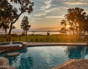 5627 DIANTHUS ST, Green Cove Springs image